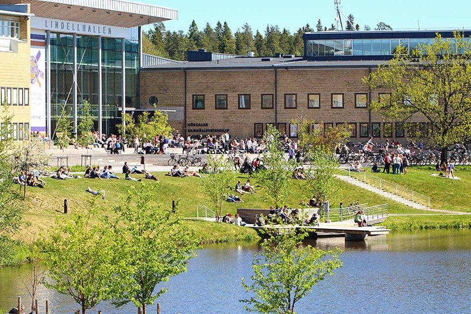 Picture over Umeå Campus
